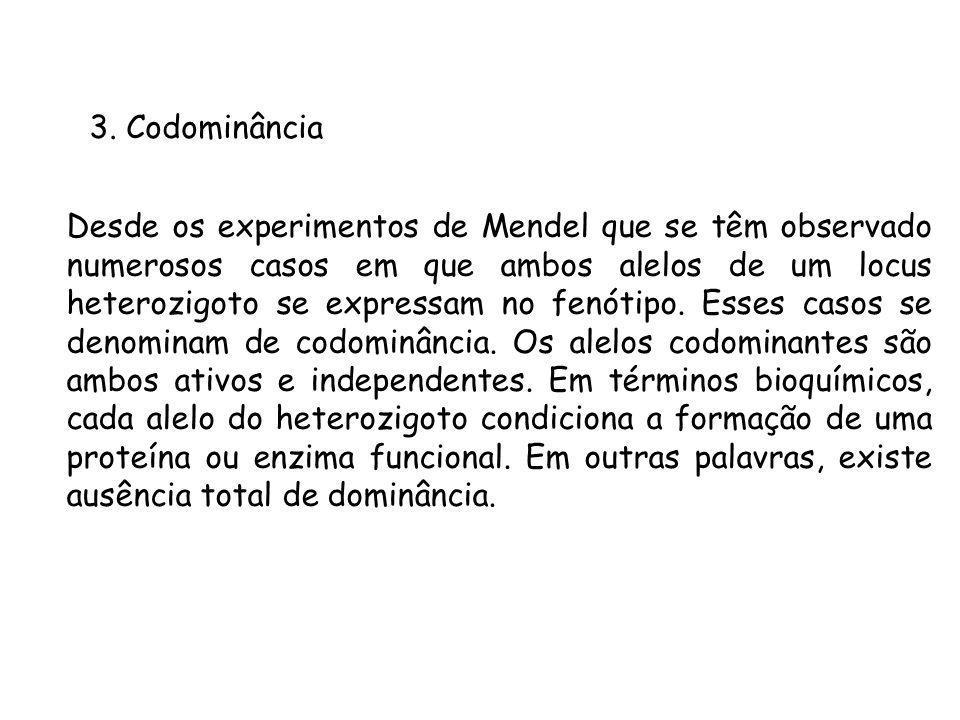 3. Codominância Desde os experimentos de Mendel que se têm observado numerosos casos em que ambos alelos de um locus heterozigoto se expressam no fenó