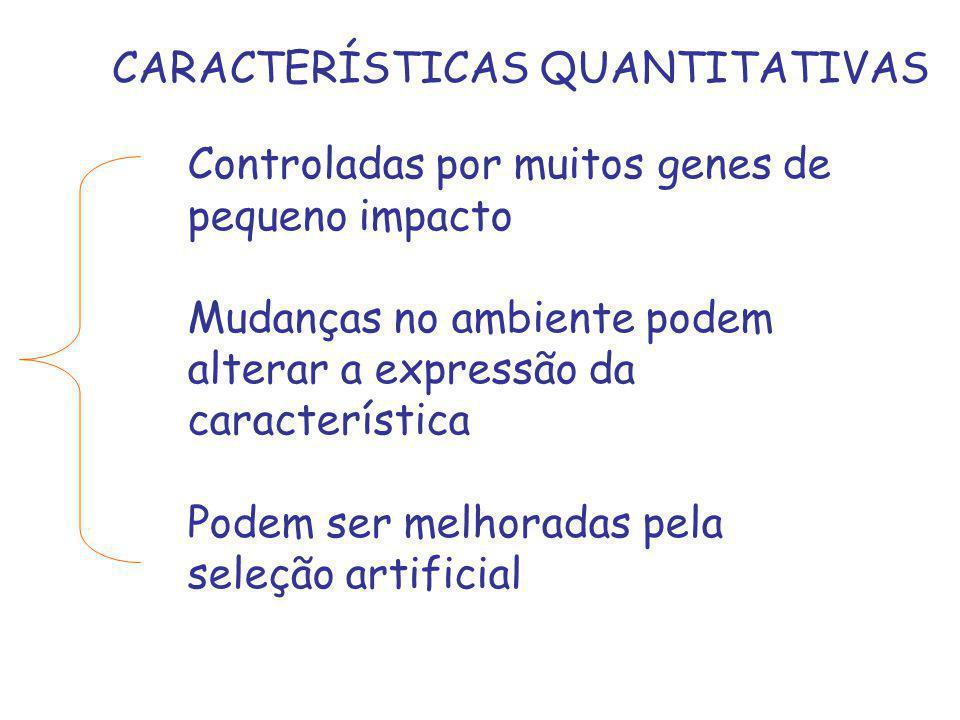 CARACTERÍSTICAS QUANTITATIVAS Controladas por muitos genes de pequeno impacto Mudanças no ambiente podem alterar a expressão da característica Podem s