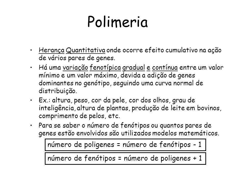 Polimeria Herança Quantitativa onde ocorre efeito cumulativo na ação de vários pares de genes. Há uma variação fenotípica gradual e contínua entre um