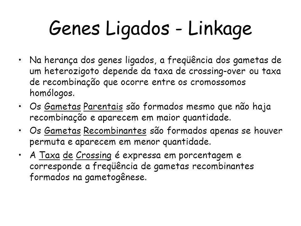 Genes Ligados - Linkage Na herança dos genes ligados, a freqüência dos gametas de um heterozigoto depende da taxa de crossing-over ou taxa de recombin