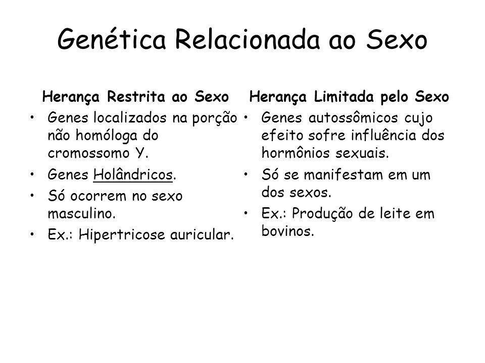Herança Influenciada pelo Sexo Genes autossômicos cujo efeito sofre influência dos hormônios sexuais.