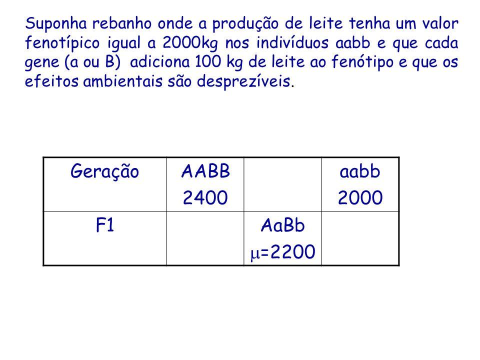 GeraçãoAABB 2400 aabb 2000 F1AaBb =2200 Suponha rebanho onde a produção de leite tenha um valor fenotípico igual a 2000kg nos indivíduos aabb e que cada gene (a ou B) adiciona 100 kg de leite ao fenótipo e que os efeitos ambientais são desprezíveis.