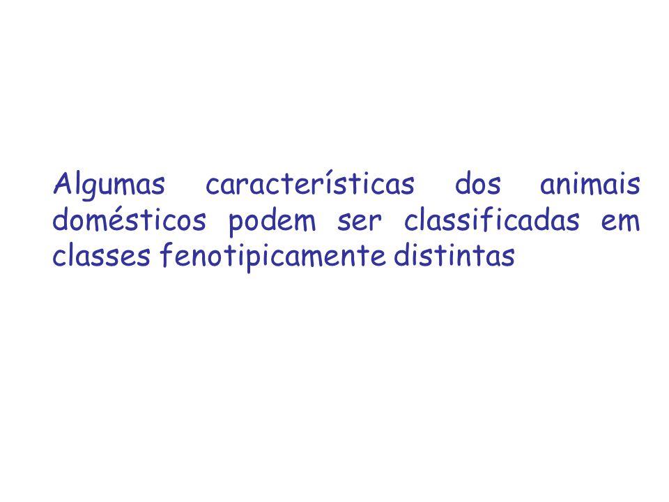 Algumas características dos animais domésticos podem ser classificadas em classes fenotipicamente distintas