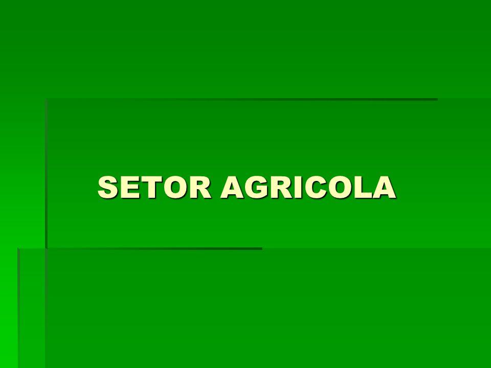 SETOR AGRICOLA