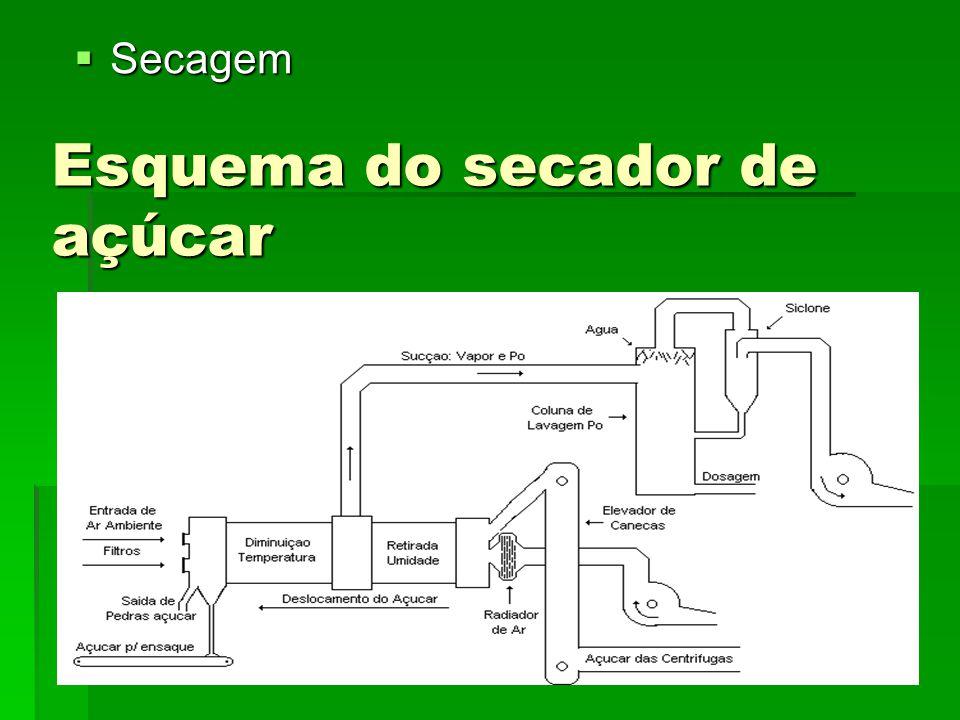 Esquema do secador de açúcar Secagem Secagem