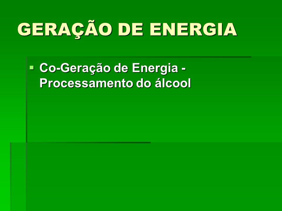 GERAÇÃO DE ENERGIA Co-Geração de Energia - Processamento do álcool Co-Geração de Energia - Processamento do álcool