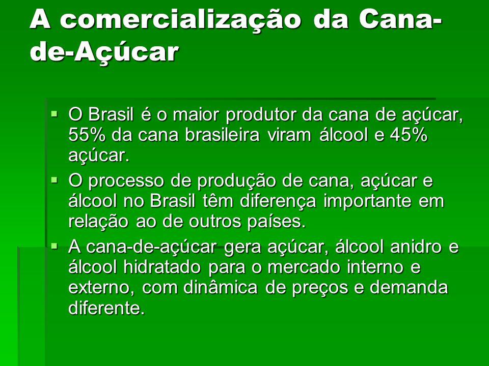 A comercialização da Cana- de-Açúcar O Brasil é o maior produtor da cana de açúcar, 55% da cana brasileira viram álcool e 45% açúcar.