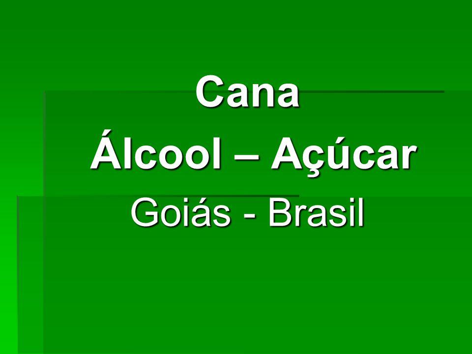 Cana Álcool – Açúcar Álcool – Açúcar Goiás - Brasil