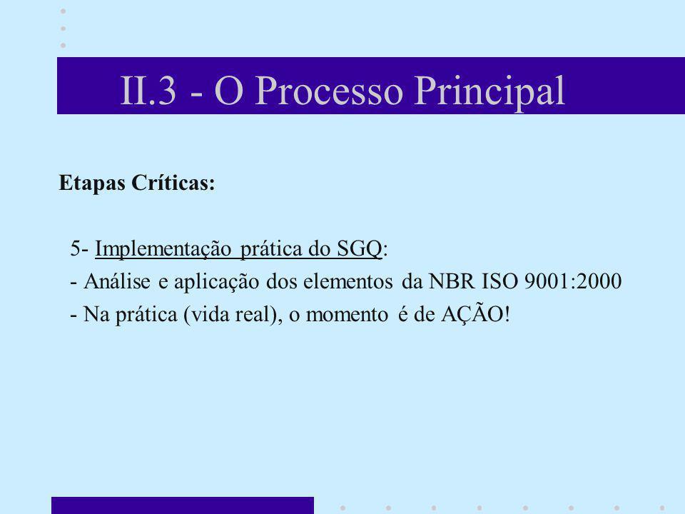 II.3 - O Processo Principal Etapas Críticas: 5- Implementação prática do SGQ: - Análise e aplicação dos elementos da NBR ISO 9001:2000 - Na prática (v