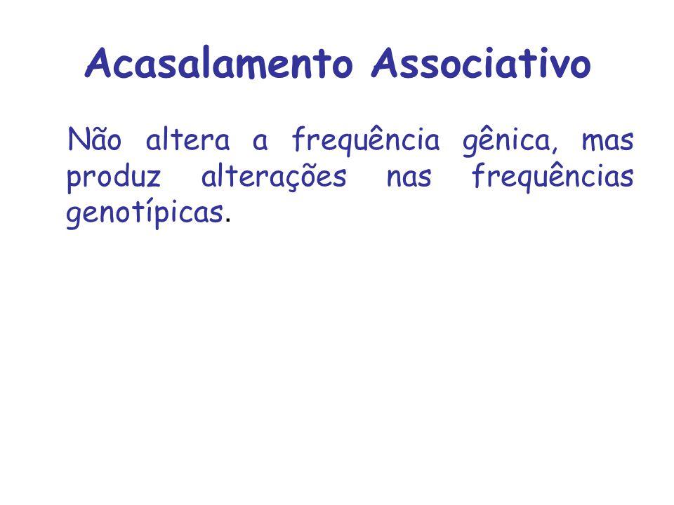Acasalamento Associativo Não altera a frequência gênica, mas produz alterações nas frequências genotípicas.