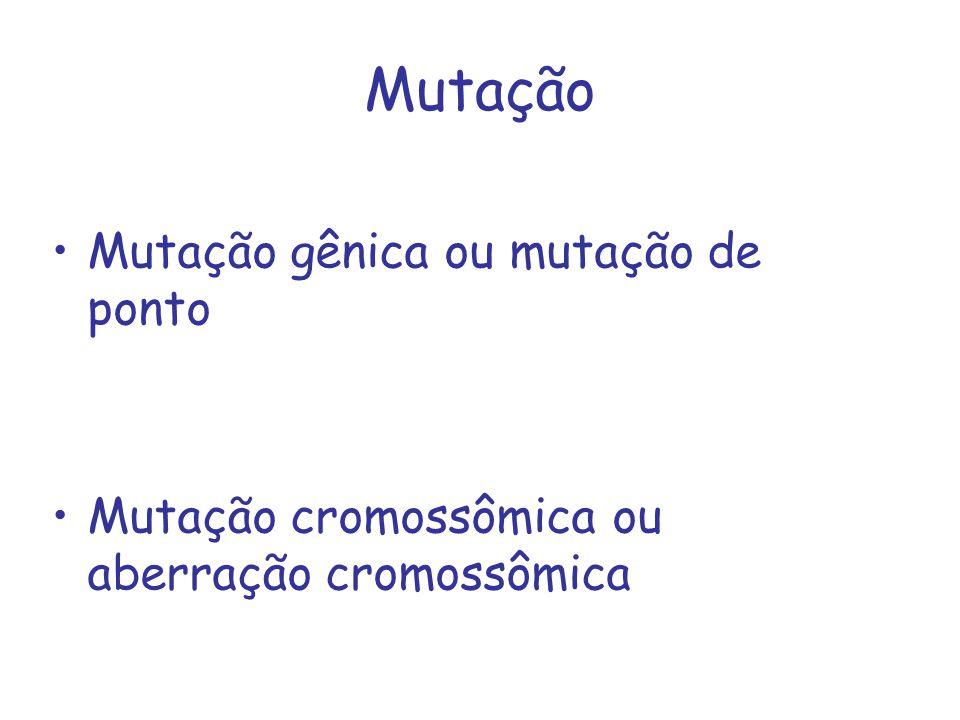 Mutação Mutação gênica ou mutação de ponto Mutação cromossômica ou aberração cromossômica