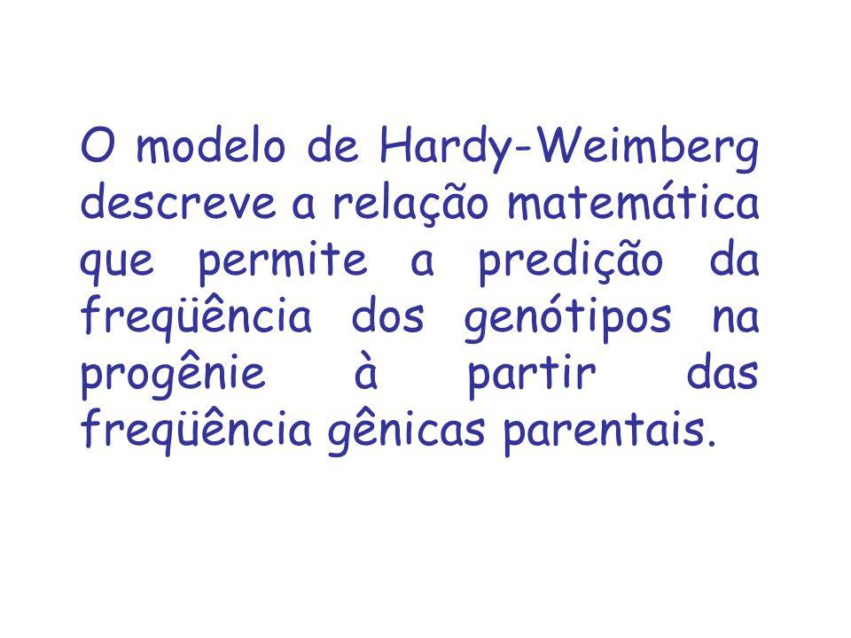O modelo de Hardy-Weimberg descreve a relação matemática que permite a predição da freqüência dos genótipos na progênie à partir das freqüência gênica