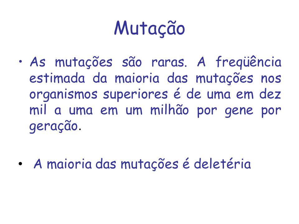 Mutação As mutações são raras. A freqüência estimada da maioria das mutações nos organismos superiores é de uma em dez mil a uma em um milhão por gene