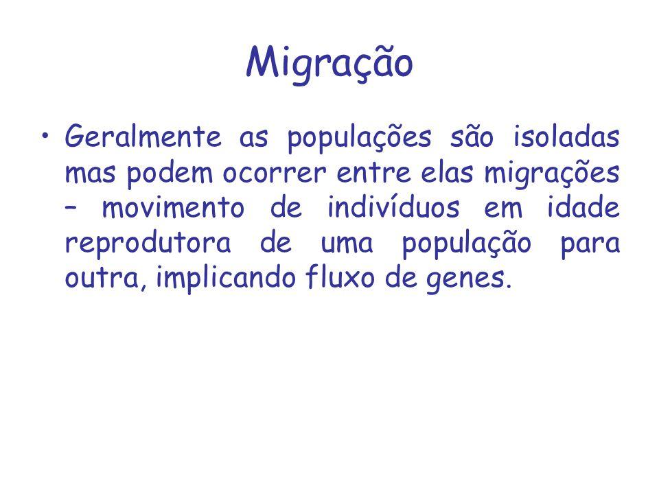 Migração Geralmente as populações são isoladas mas podem ocorrer entre elas migrações – movimento de indivíduos em idade reprodutora de uma população