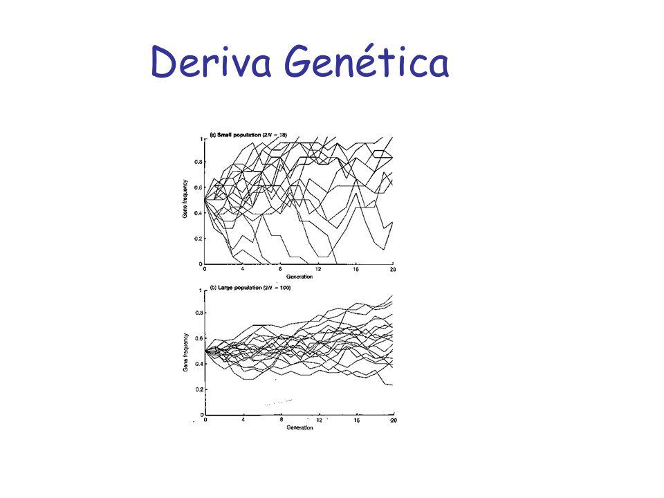 Deriva Genética
