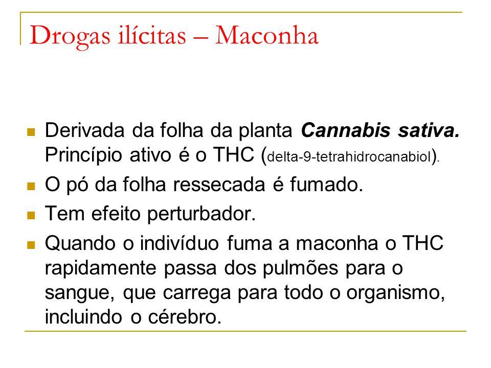 Drogas ilícitas – Maconha Derivada da folha da planta Cannabis sativa.