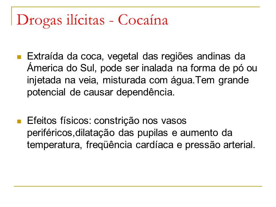 Drogas ilícitas - Cocaína Extraída da coca, vegetal das regiões andinas da Ámerica do Sul, pode ser inalada na forma de pó ou injetada na veia, misturada com água.Tem grande potencial de causar dependência.