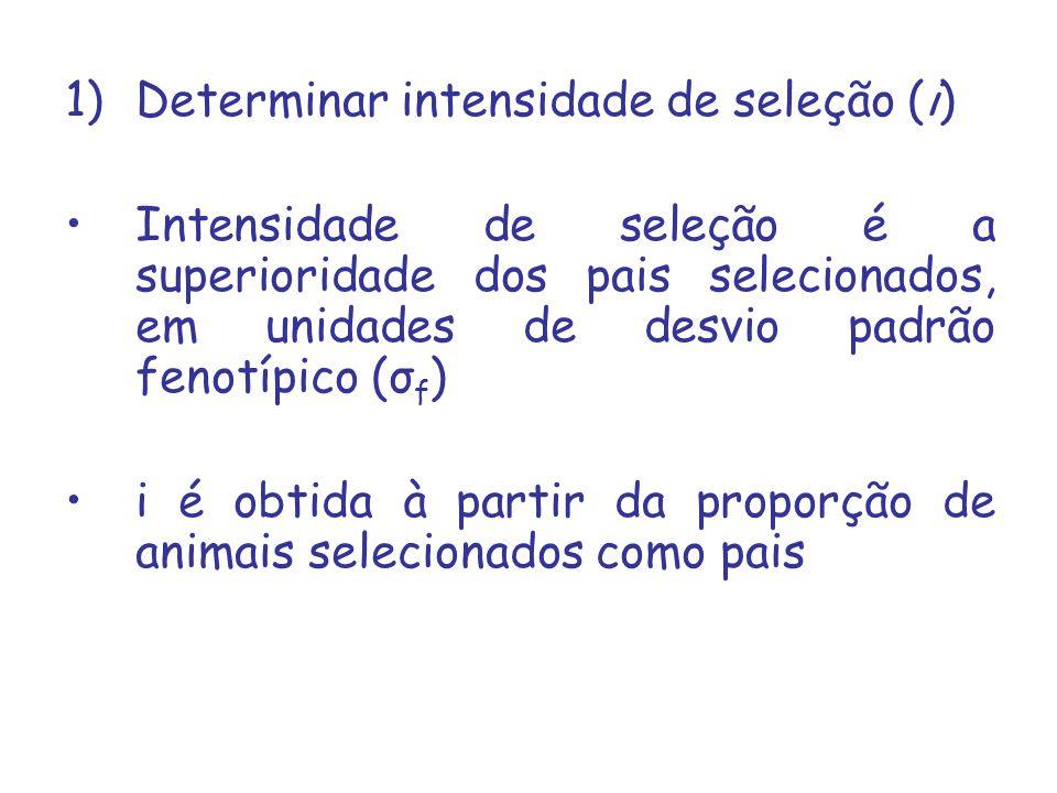 1)Determinar intensidade de seleção (i) Intensidade de seleção é a superioridade dos pais selecionados, em unidades de desvio padrão fenotípico (σ f ) i é obtida à partir da proporção de animais selecionados como pais