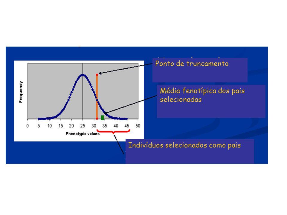 F =5 Neste exemplo: i = 1,75 e DS = i x F = 5 x 1,75 = 8,75