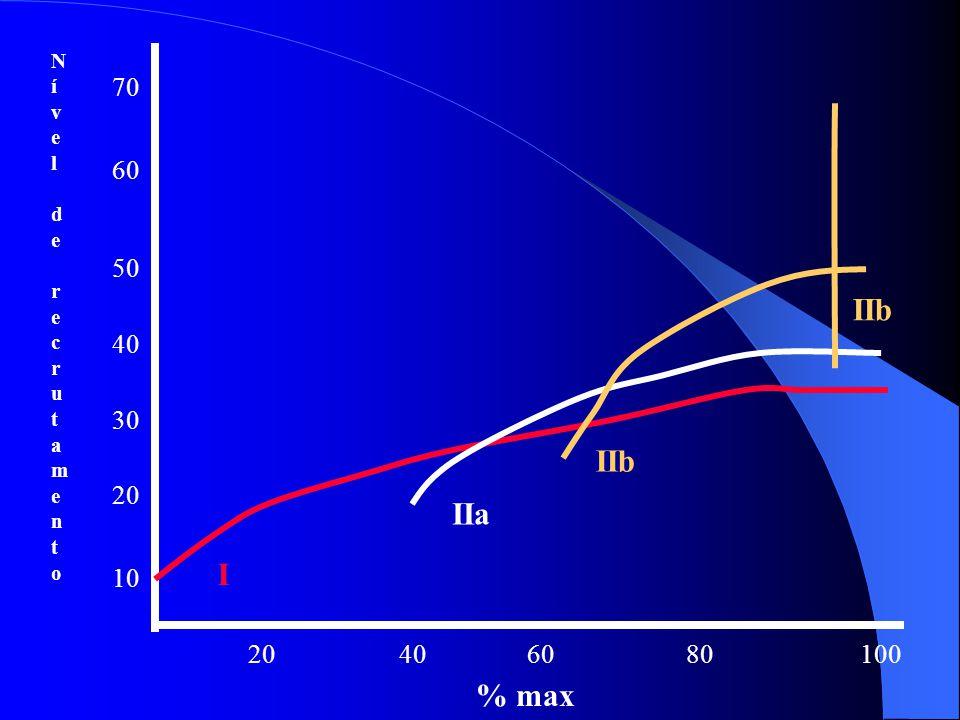 ADAPTAÇÕES Relação força x potência. – Fibras lentas são recrutadas primeiro – À medida que força aumenta fibras rápidas passam a ser recrutadas. – Ve