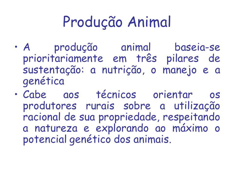 Produção Animal A produção animal baseia-se prioritariamente em três pilares de sustentação: a nutrição, o manejo e a genética Cabe aos técnicos orien