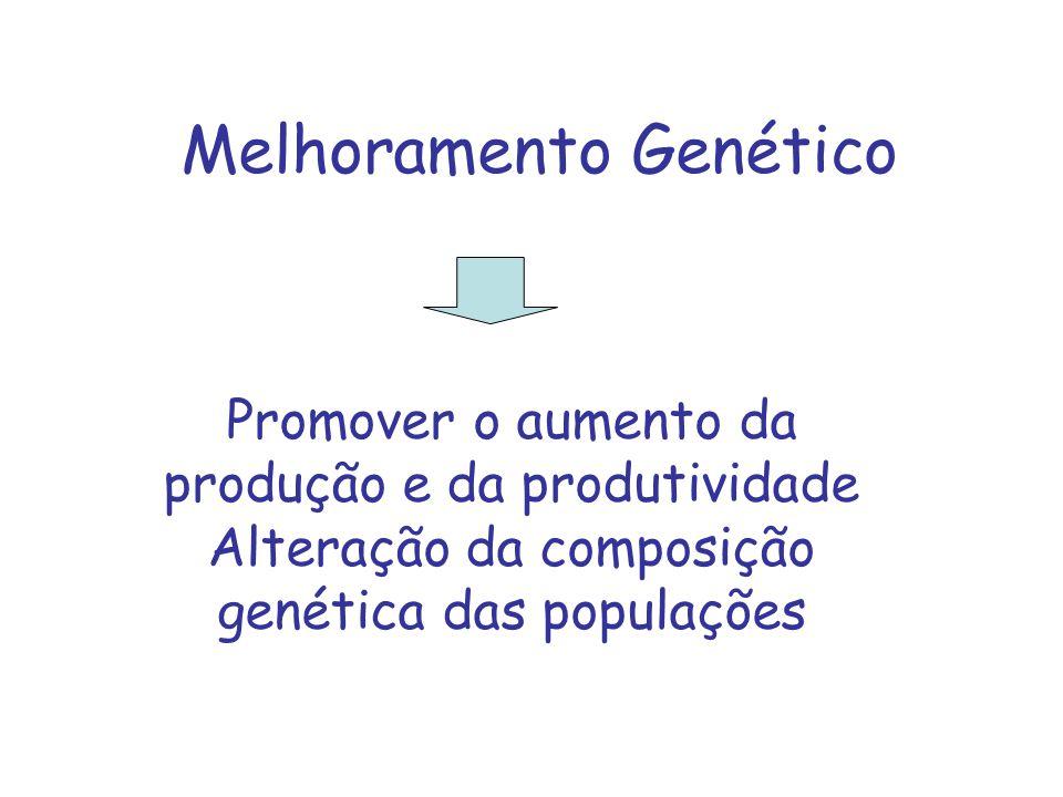 Melhoramento Genético Promover o aumento da produção e da produtividade Alteração da composição genética das populações