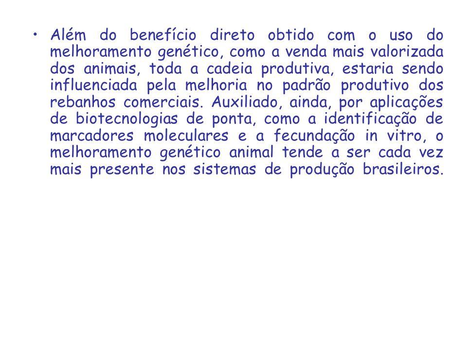 Além do benefício direto obtido com o uso do melhoramento genético, como a venda mais valorizada dos animais, toda a cadeia produtiva, estaria sendo i