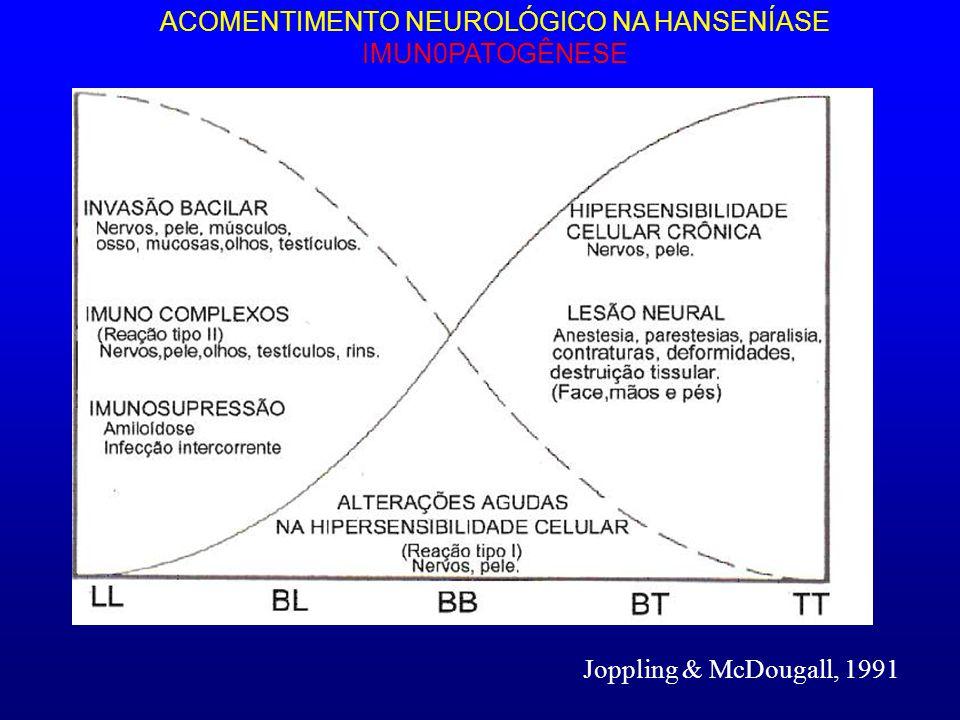 ACOMENTIMENTO NEUROLÓGICO NA HANSENÍASE IMUN0PATOGÊNESE Joppling & McDougall, 1991