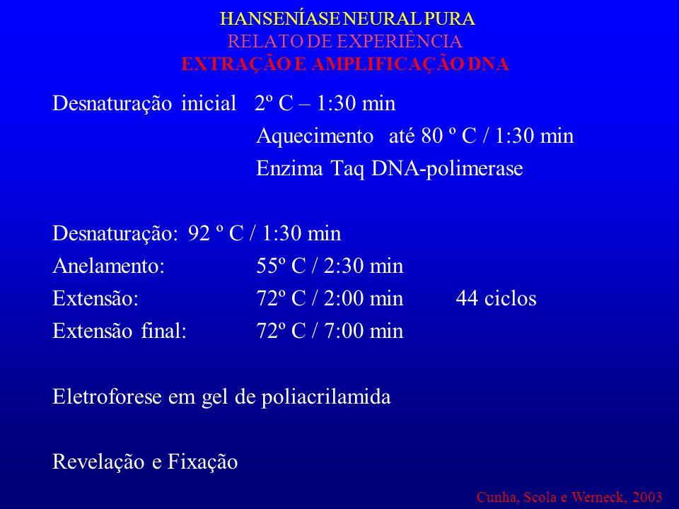 HANSENÍASE NEURAL PURA RELATO DE EXPERIÊNCIA EXTRAÇÃO E AMPLIFICAÇÃO DNA Desnaturação inicial 2º C – 1:30 min Aquecimento até 80 º C / 1:30 min Enzima