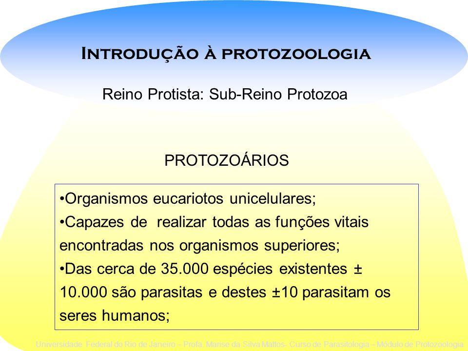 Classificação taxonômica (Levine,1980) ProtistaREINO: SUB-REINO:Protozoa FILO*: SarcomastigophoraMicrospora Ciliophora Apicomplexa SUB-FILO: *filos de interesse em parasitologia humana SarcodinaMastigophora com flagelos com pseudópodo s ciliados Kinetofragminophorea Universidade Federal do Rio de Janeiro – Profa.