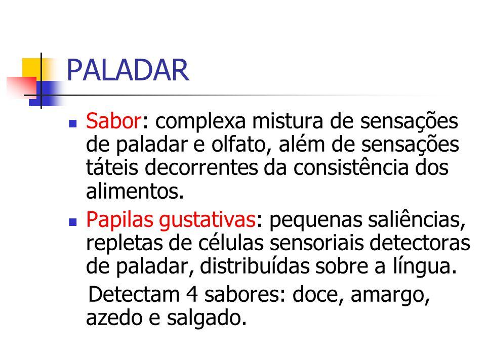 PALADAR Sabor: complexa mistura de sensações de paladar e olfato, além de sensações táteis decorrentes da consistência dos alimentos.