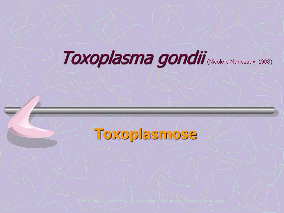 Toxoplasma gondii Toxoplasma gondii (Nicole e Manceaux, 1908) Toxoplasmose Profa.