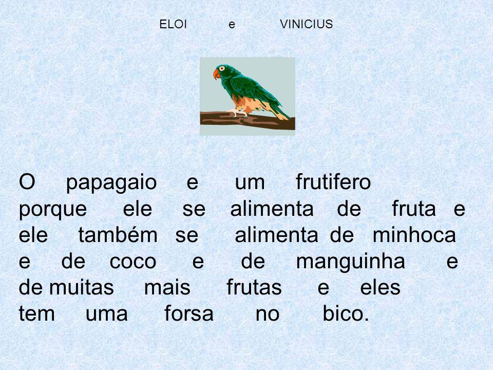 ELOI e VINICIUS O papagaio e um frutifero porque ele se alimenta de fruta e ele também se alimenta de minhoca e de coco e de manguinha e de muitas mai