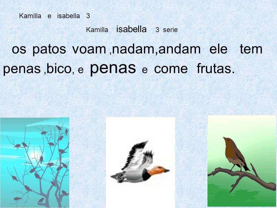 Kamilla e isabella 3 Kamilla isabella 3 serie os patos voam, nadam,andam ele tem penas, bico, e penas e come frutas.