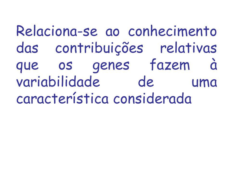 Relaciona-se ao conhecimento das contribuições relativas que os genes fazem à variabilidade de uma característica considerada