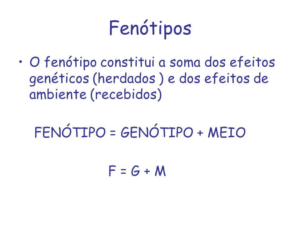 Fenótipos O fenótipo constitui a soma dos efeitos genéticos (herdados ) e dos efeitos de ambiente (recebidos) FENÓTIPO = GENÓTIPO + MEIO F = G + M