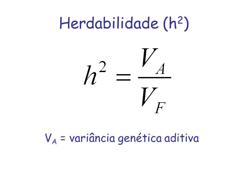 Herdabilidade (h 2 ) V A = variância genética aditiva