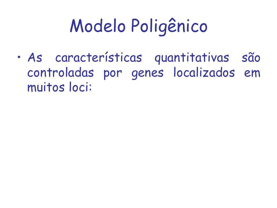 Apenas os efeitos aditivos são transmitidos à progênie, pois cada um dos pais contribui apenas com um alelo de cada locus