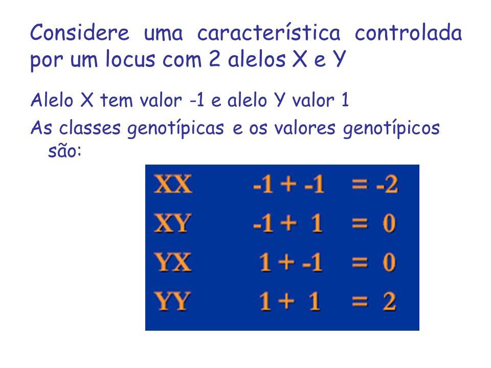 Considere uma característica controlada por um locus com 2 alelos X e Y Alelo X tem valor -1 e alelo Y valor 1 As classes genotípicas e os valores gen