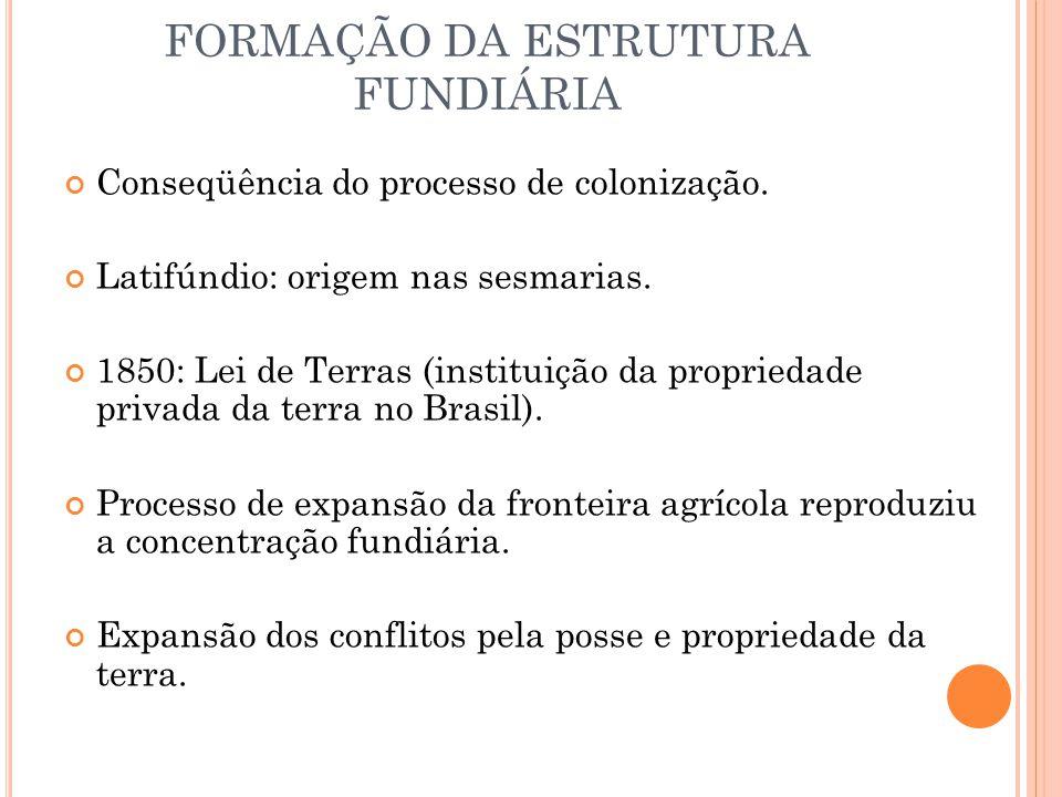 FORMAÇÃO DA ESTRUTURA FUNDIÁRIA Conseqüência do processo de colonização.