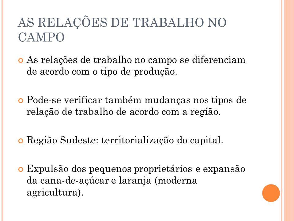 AS RELAÇÕES DE TRABALHO NO CAMPO As relações de trabalho no campo se diferenciam de acordo com o tipo de produção.