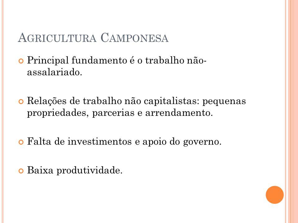 A GRICULTURA C AMPONESA Principal fundamento é o trabalho não- assalariado.