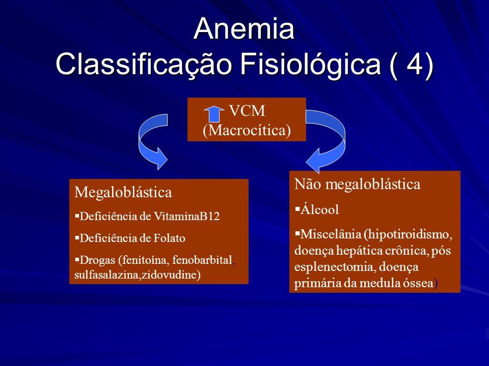 Anemia Classificação Fisiológica (3) VCM (Microcítica) Deficiência de Fe Talassemia Hemoglobina E Anemia sideroblástica Normal VCM (Normocítica) retic