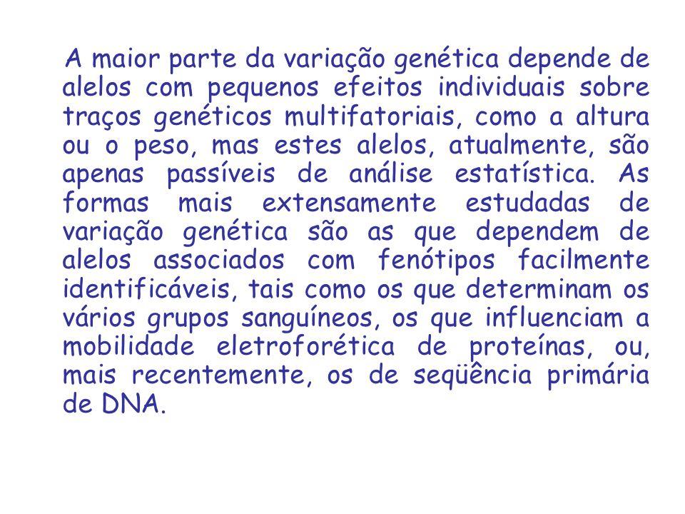 A maior parte da variação genética depende de alelos com pequenos efeitos individuais sobre traços genéticos multifatoriais, como a altura ou o peso, mas estes alelos, atualmente, são apenas passíveis de análise estatística.