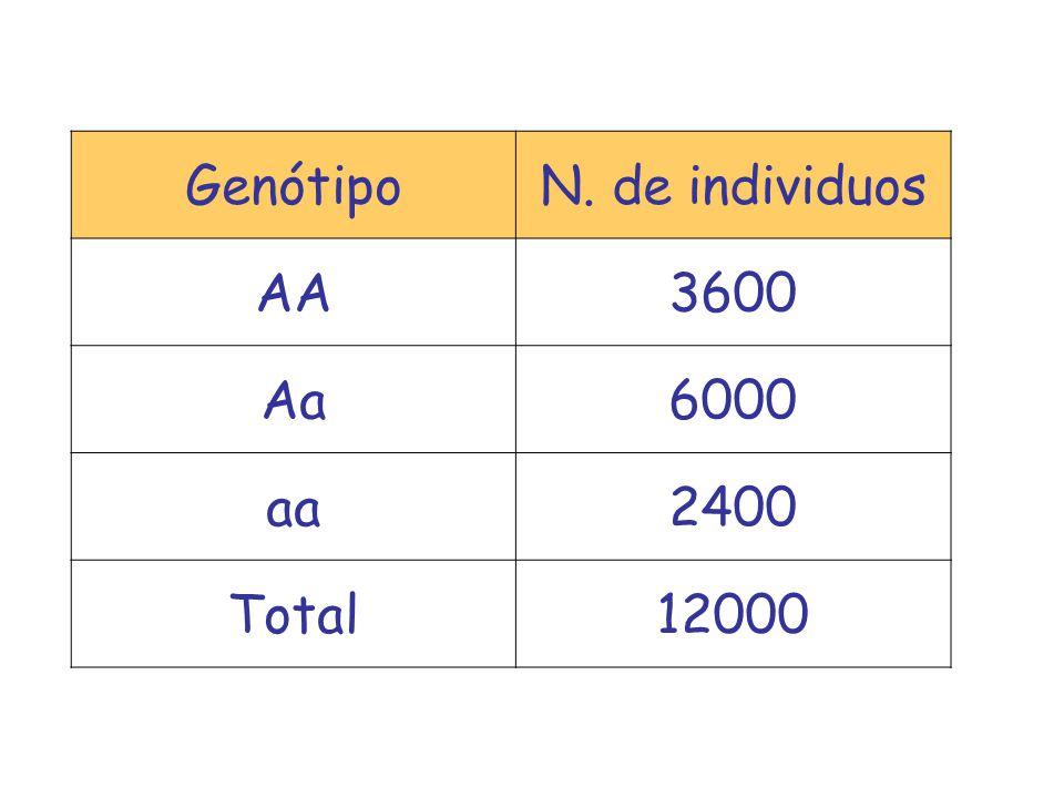 GenótipoN. de individuos AA3600 Aa6000 aa2400 Total12000