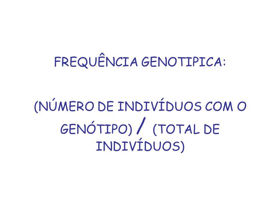 FREQUÊNCIA GENOTIPICA: (NÚMERO DE INDIVÍDUOS COM O GENÓTIPO) / (TOTAL DE INDIVÍDUOS)