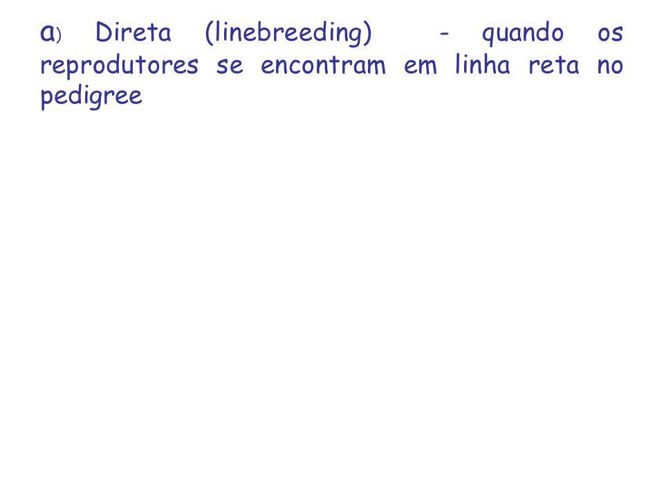 a ) Direta (linebreeding) - quando os reprodutores se encontram em linha reta no pedigree