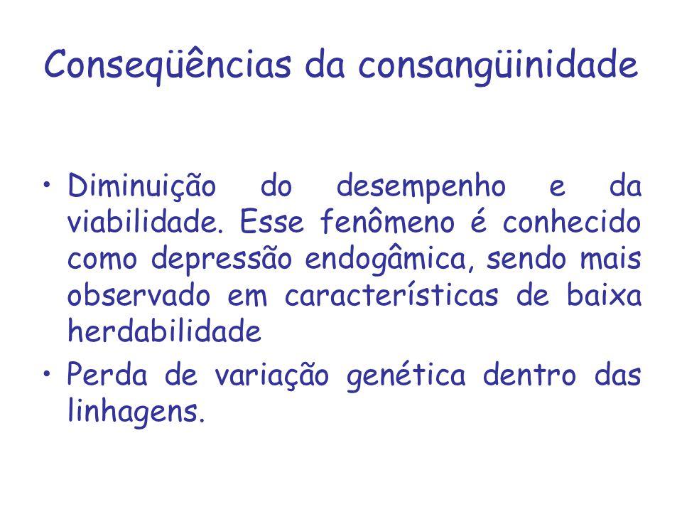 Diminuição do desempenho e da viabilidade. Esse fenômeno é conhecido como depressão endogâmica, sendo mais observado em características de baixa herda