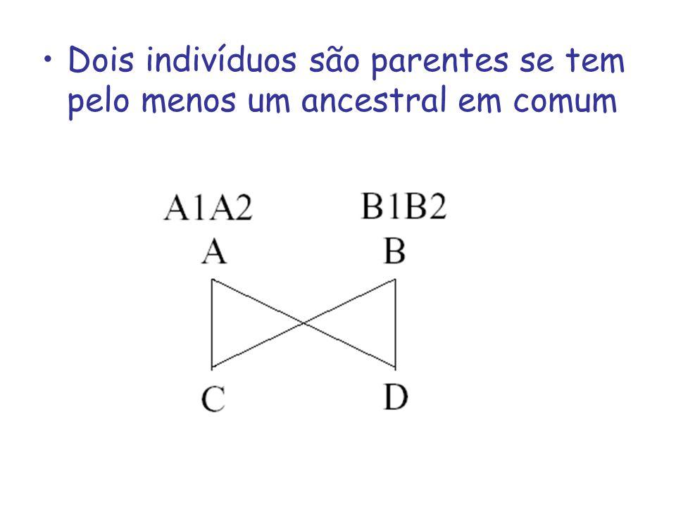 Tanto C como B receberam ao acaso metade dos genes de A e a outra metade de B Portando espera-se que C e D tenham em comum ¼ dos genes de A e ¼ dos genes de B, perfazendo o total de ½