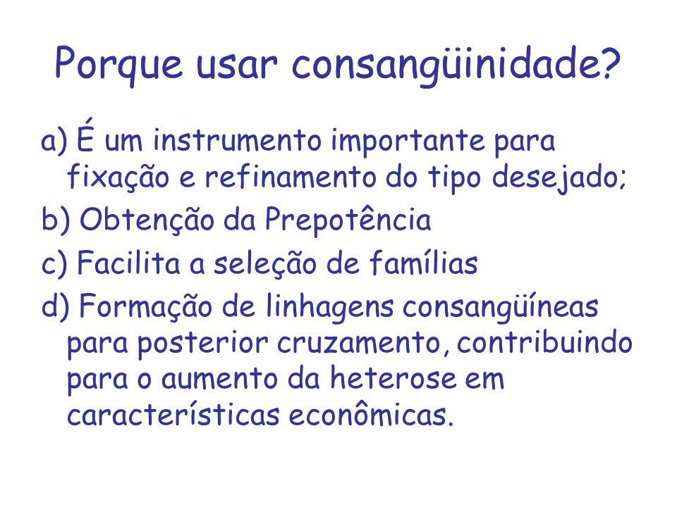 Porque usar consangüinidade? a) É um instrumento importante para fixação e refinamento do tipo desejado; b) Obtenção da Prepotência c) Facilita a sele